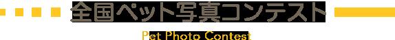 全国ペット写真コンテスト